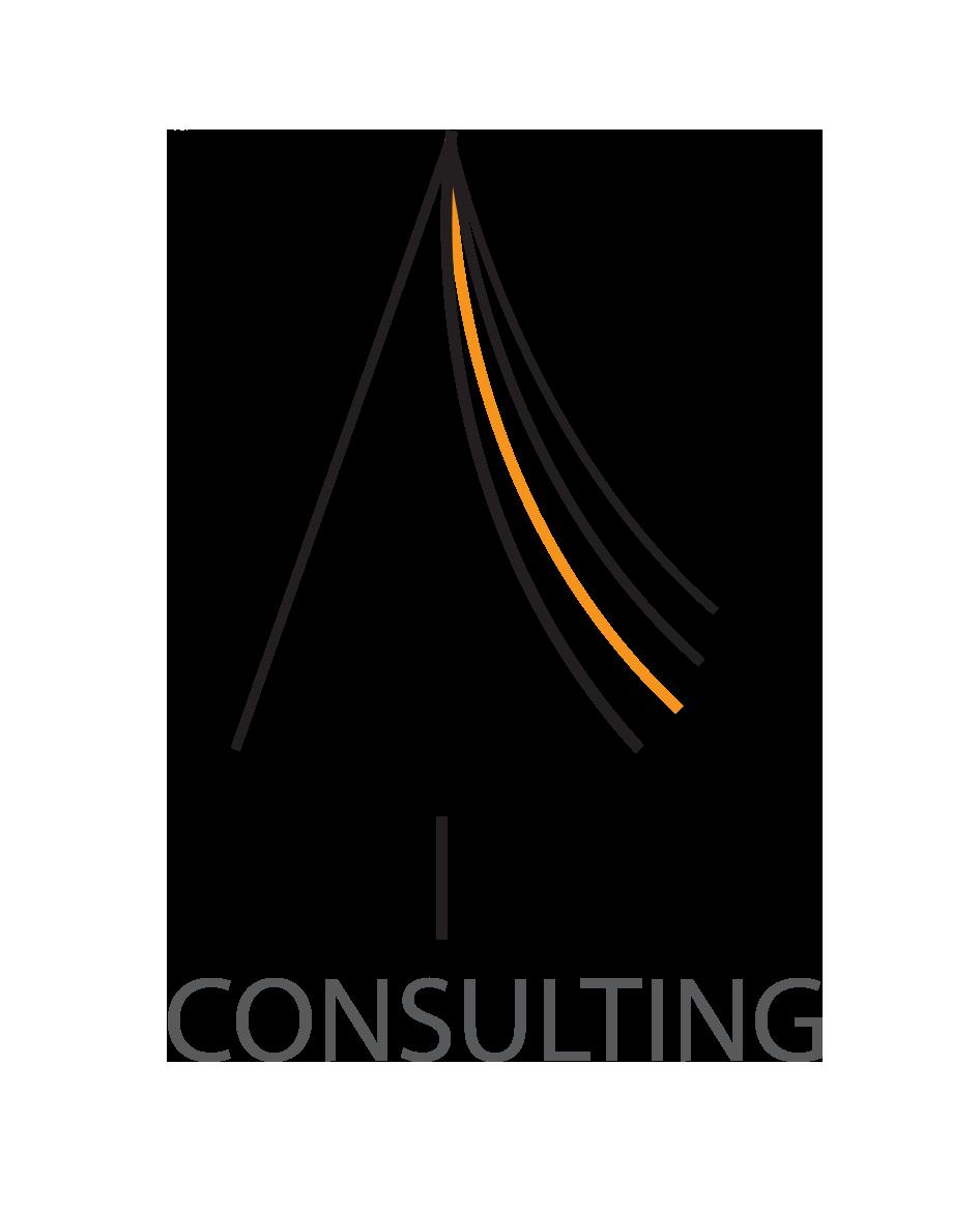 Asista Consulting